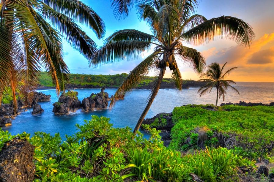 полететь на Гавайи